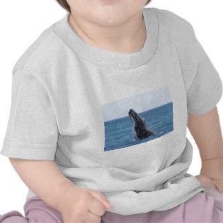 Violación de la ballena camiseta