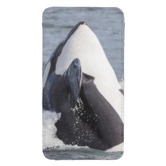 Violación de la ballena de la orca funda acolchada para galaxy s4