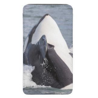 Violación de la ballena de la orca funda para galaxy s5