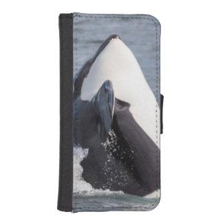 Violación de la ballena de la orca fundas billetera para teléfono