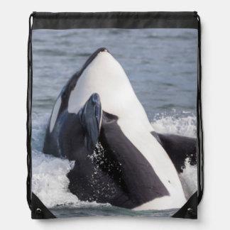 Violación de la ballena de la orca mochila