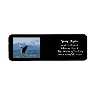 Violación de la ballena jorobada etiqueta de remite