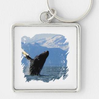 Violación de la ballena jorobada llavero cuadrado plateado