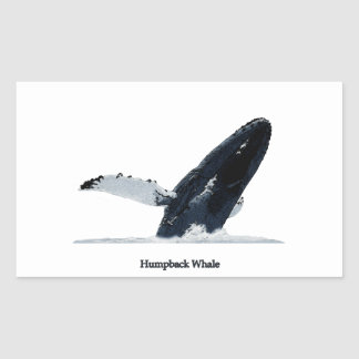 Violación de la ballena jorobada rectangular pegatina