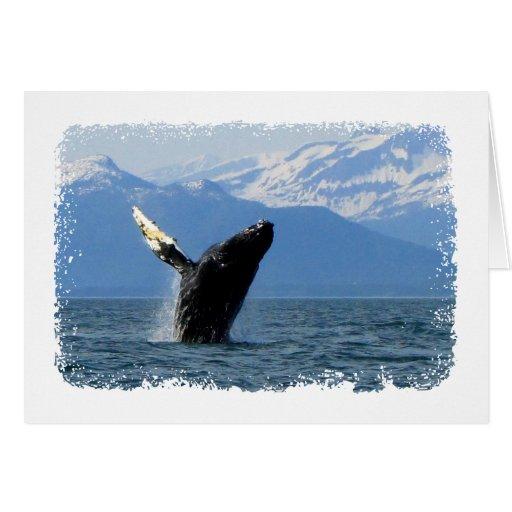 Violación de la ballena jorobada tarjeta