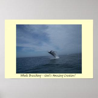 Violación de la ballena posters