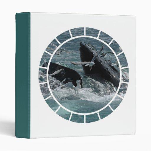 Violación de la carpeta de la ballena jorobada