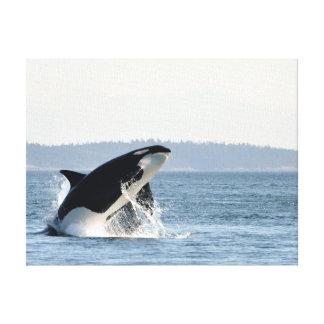 Violación de la impresión de la lona de la orca lienzo envuelto para galerías