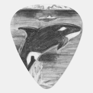 Violación de la orca plumilla de guitarra
