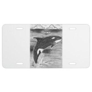 Violación de la orca placa de matrícula