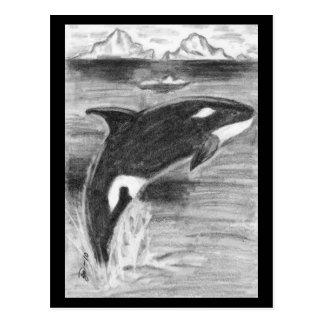 Violación de la orca postal