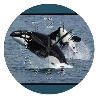 Violación de las orcas de la orca reloj redondo grande