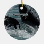 Violación de los ornamentos de la ballena jorobada ornamentos para reyes magos