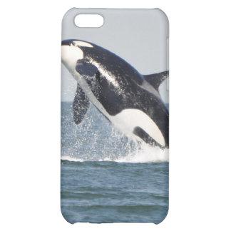 Violación del caso del iPhone 4 de la orca