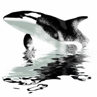 """""""VIOLANDO escultura de la foto de la orca de la OR Llavero Fotográfico"""