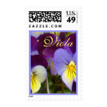 Violas amarillas púrpuras