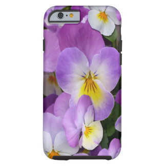 Violas delicadas funda resistente iPhone 6
