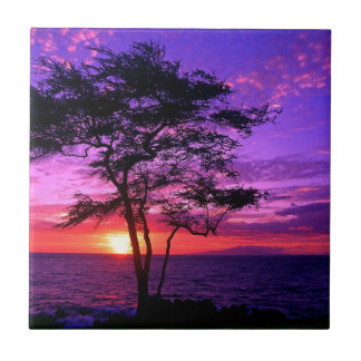 Violet and Pink Sunset Tree Ceramic Tile