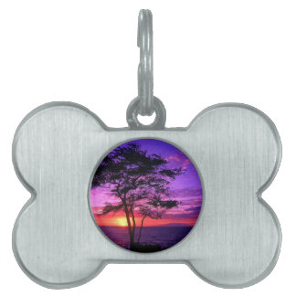 Violet and Pink Sunset Tree Pet ID Tag