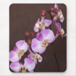 Violet and White Orchid Close Up Photograph Mouse Pad