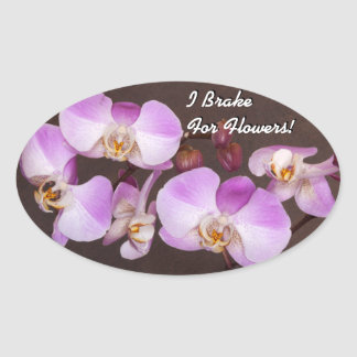 Violet and White Orchid Close Up Photograph Oval Sticker