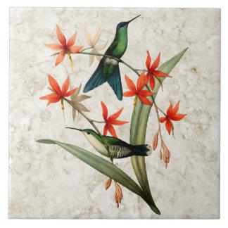 Violet Capped Wood Nymph Hummingbird Ceramic Tile