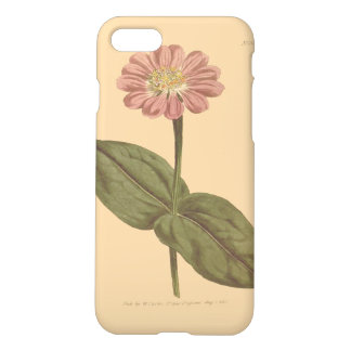 Violet Colored Zinnia Illustration iPhone 8/7 Case