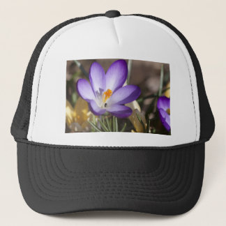 Violet Crocus from Above Trucker Hat