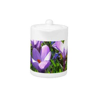 Violet crocuses 02.2, spring greetings teapot