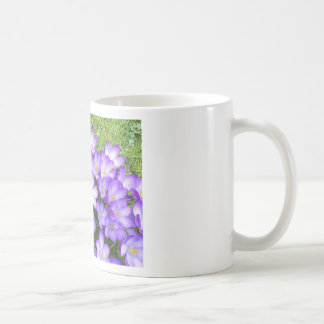 Violet Crocuses in the Grass Coffee Mugs