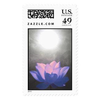 Violet Essence Of Light Postage Stamp