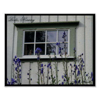 Violet Flowers and a Window Poster