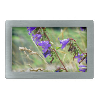 Violet flowers on the meadow in the wind rectangular belt buckle