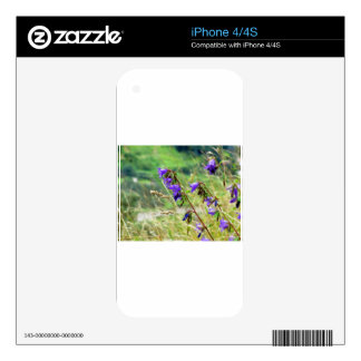 Violet flowers on the meadow in the wind iPhone 4S decal