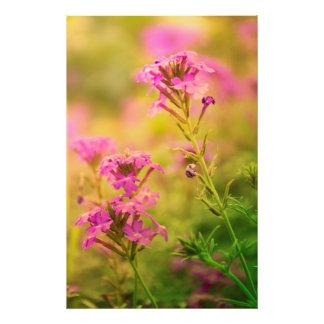 Violet Flowers Art Photo