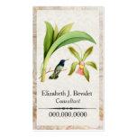 Violet Headed Hummingbird Business Cards
