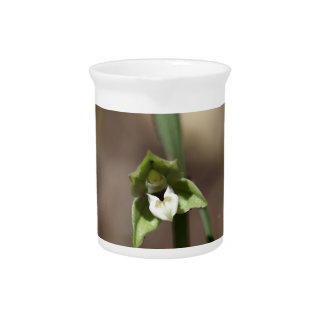 Violet Helleborine (Epipactis purpurata) Beverage Pitcher