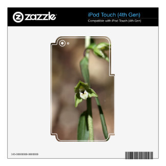 Violet Helleborine (Epipactis purpurata) Skins For iPod Touch 4G