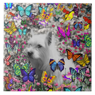 Violet in Butterflies – White Westie Dog Ceramic Tile