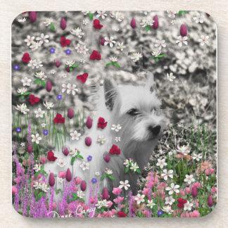 Violet in Flowers – White Westie Dog Drink Coaster