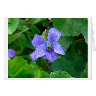 Violet in the Rain Stationery Note Card