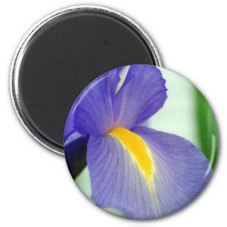 violet iris 2 inch round magnet