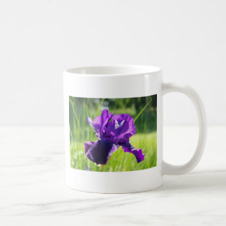 Violet Iris Flower Coffee Mug