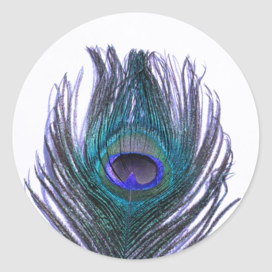 Violet Peacock Feather Classic Round Sticker