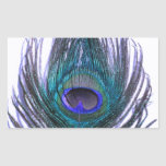 Violet Peacock Feather Rectangular Sticker