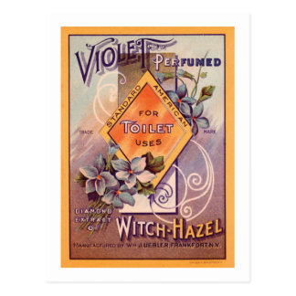 Violet Perfumed - 1903 Postcard