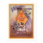 Violet Perfumed - 1903 Postcards