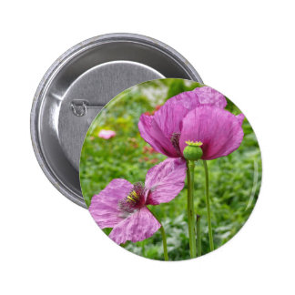 Violet Poppies / Purple Poppies Pinback Button