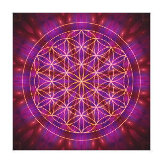 Violet power and the of flower OF life Canvas Print