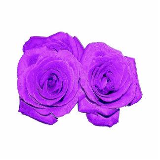 "Violet/Purple ""Enameled"" Roses Photo Sculptures"